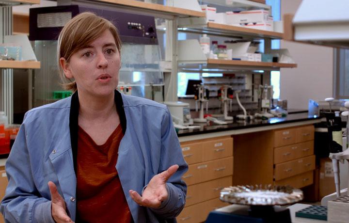 Dr. Christina Warinner Headshot