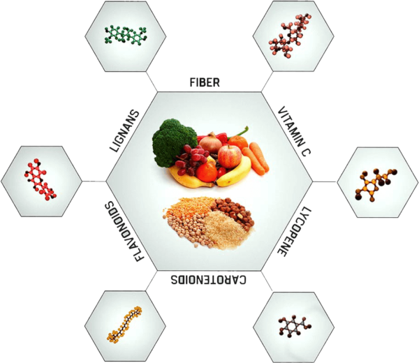 Important Nutrients The Game Changers